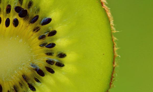 Todo lo que debes saber sobre el kiwi